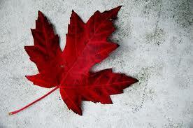 maple_leaf.226155742_std